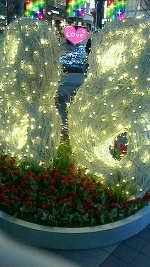 メリークリスマス(*^^*)