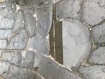 石畳み(♂)